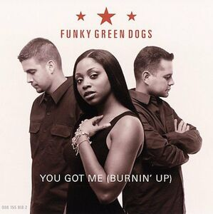Vinile You Got me Funky Green Dogs