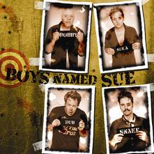 The Hits vol. Sue! - CD Audio di Boys Named Sue