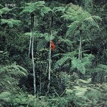 Spice - Vinile LP di Spice