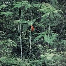 Spice - CD Audio di Spice