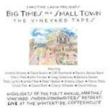 Big Times in a Small Town - CD Audio di Christine Lavin