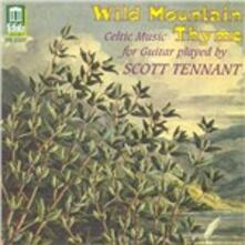 Musica celtica per chitarra - CD Audio