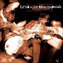 Rattleshake - CD Audio di Lil' Ed,Blues Imperials