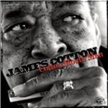 Cotton Mouth Man - CD Audio di James Cotton