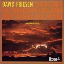 Amber Skies - CD Audio di David Friesen