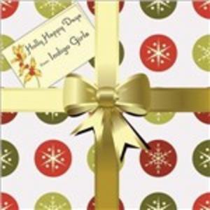 CD Holly Happy Days di Indigo Girls