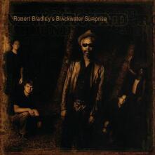New Ground - CD Audio di Robert Bradley