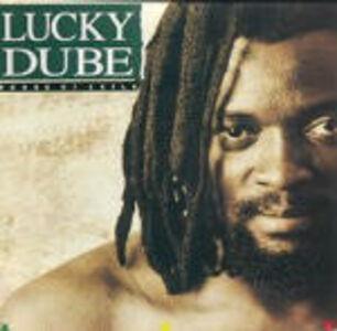 Foto Cover di House of Exile, CD di Lucky Dube, prodotto da Shanachie