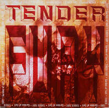 Garden Of Evil - Vinile LP di Tender Fury