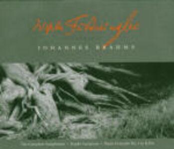 CD Sinfonie complete - Concerto per pianoforte n.2 - Variazioni su un tema di Haydn di Johannes Brahms