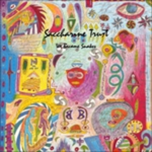 CD We Became Snakes di Saccharine Trust