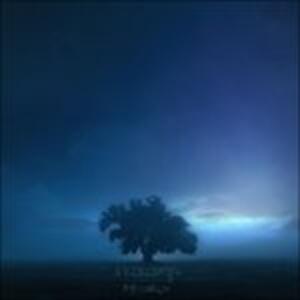 Husks - Vinile LP di Haarp