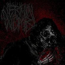 Decline - Vinile LP di Vermin Womb