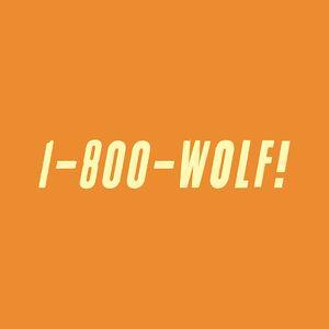 CD 1 - 800 - Wolf di Wolf