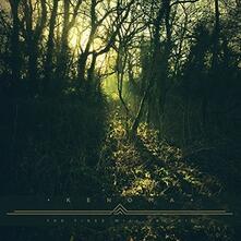 Tides Will - Vinile LP di Kenoma