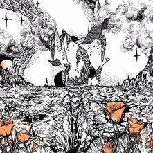 Last of the Acid Cowboys - Vinile LP di Evolfo
