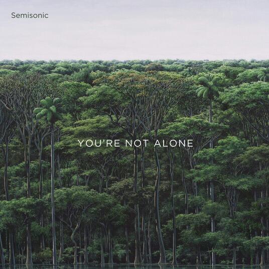 You're Not Alone - Vinile LP di Semisonic