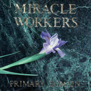 CD Primary Domain di Miracle Workers