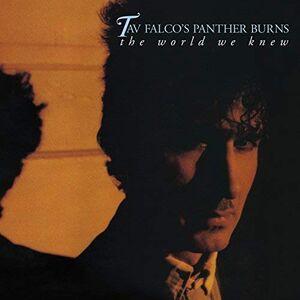 CD The World We Knew di Tav Falco