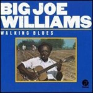 Walking Blues - CD Audio di Big Joe Williams