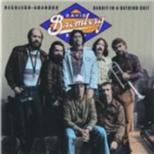 CD Reckless Abandon. Bandit in a Bathing Suit di David Bromberg