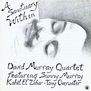 A Sanctuary Within - CD Audio di David Murray