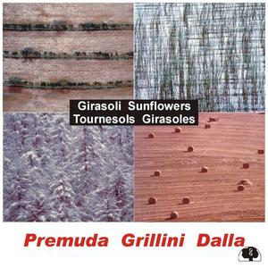 CD Girasoli Guido Premuda , Gilberto Grillini , Alessandro Dalla