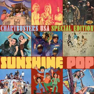 CD Sunshine Pop. Chartbusters USA