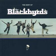 The Best of Blackbyrds - CD Audio di Blackbyrds
