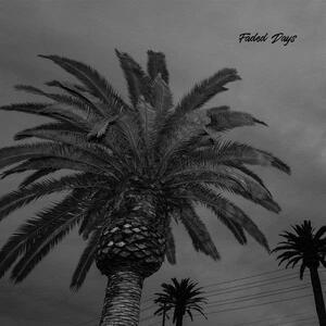 Faded Days - Vinile LP di Actual Wolf