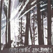 Dim Light - Vinile LP di Gun Outfit