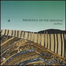 Faultline - CD Audio di Birdsongs of the Mesozoic