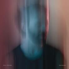 Impermanence (Deluxe Edition) - Vinile LP di Peter Silberman