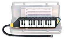 Clavietta 25 Tasti con Valigetta e Metodo Musicale. Bontempi (33 4262)