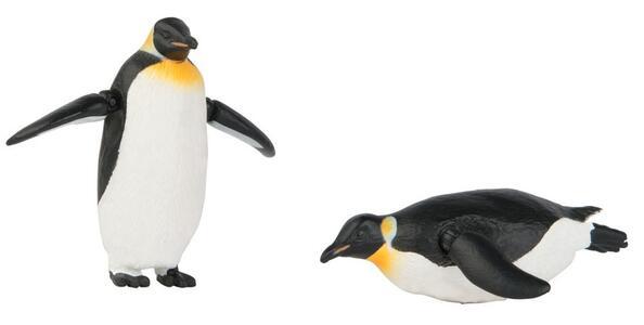 Pinguini Tomy