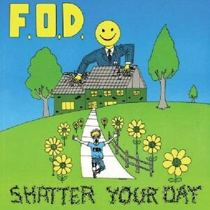 Shatter Your Day - CD Audio di Flag of Democracy
