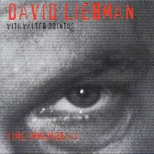 Time Immemorial - CD Audio di David Liebman