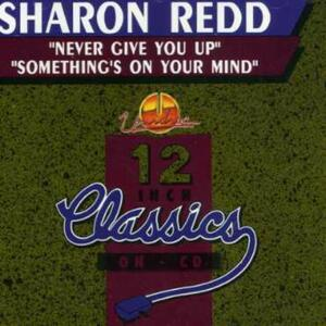 Never Give You Up - CD Audio Singolo di Sharon Redd