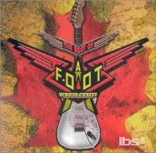 Best of - CD Audio di A Foot in Coldwater