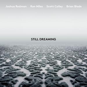 Still Dreaming - Vinile LP di Joshua Redman