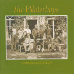 Fisherman's Blues - CD Audio di Waterboys