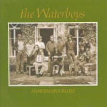 Fisherman's Blues - CD Audio di Waterboys