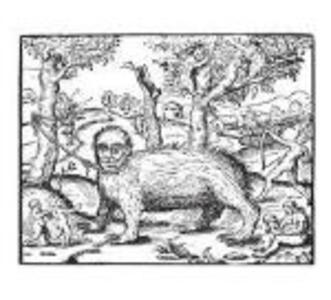 Demon - CD Audio di Envelopes
