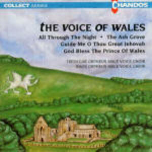 The Voice of Wales - CD Audio