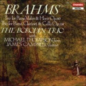 Musica da camera - CD Audio di Johannes Brahms