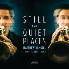 Still and Quiet Places - CD Audio di Matthew Vangjel