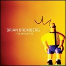 It Is What it Is - CD Audio di Brian Bromberg
