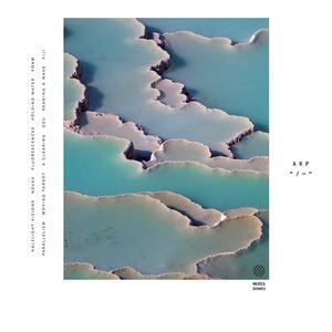 Zebra - Vinile LP di Arp