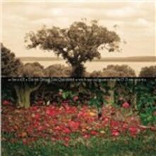 Be Still - CD Audio di Dave Douglas