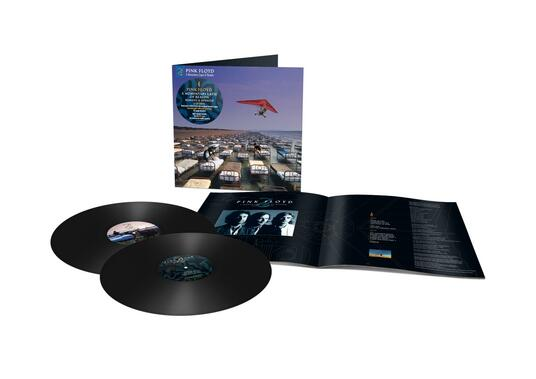 A Momentary Lapse of Reason (Remixed & Updated) (2 LP) - Vinile LP di Pink Floyd - 2